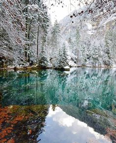 Blausee, BE Switzerland                                                       …