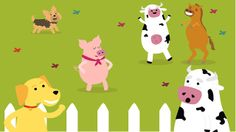 Video LHA Animal's Medicine