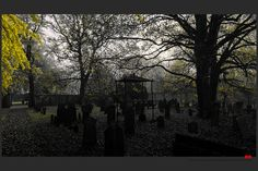 https://flic.kr/p/AC5RZB | Autumn at the Jewish cemetery in Ferrara | © This photo is copyrighted by the photographer and may not be used without permission.