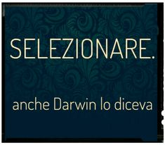 Selezionare Great Quotes, Me Quotes, Funny Quotes, Funny Links, Famous Phrases, True Stories, Sentences, Quotations, Lol