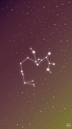 Sagittarius - Phone Vector Wallpaper