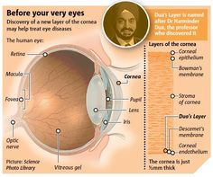 The recently discovered Dua Layer in the Cornea is changing the way we understand and treat human vision.