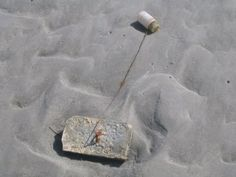 Geocache container (the bottle) that is 1/2 mile from shore that you can only find when the tide is down