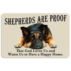 Wicked Training Your German Shepherd Dog Ideas. Mind Blowing Training Your German Shepherd Dog Ideas.