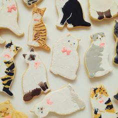 kitty cookie brooch