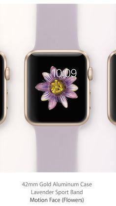 Apple watch, gold 42 mm gold aluminium case, lavender sportsband, motion face (flower).