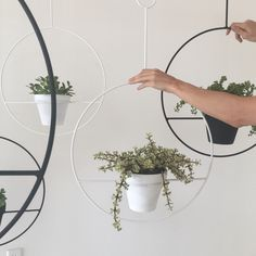 Large Hanging Plant Holder by SonadoraInLove on Etsy https://www.etsy.com/listing/236036368/large-hanging-plant-holder