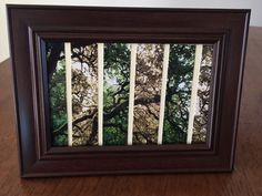 Tree photo, photography, nature picture, unique photo, by Frogkissers on Etsy https://www.etsy.com/listing/252227595/tree-photo-photography-nature-picture