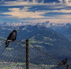 Zurich, Mountains, Nature, Travel, Naturaleza, Viajes, Destinations, Traveling, Trips