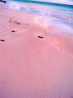 Pink Sands Beach, Harbour Island Bahamas   ............... when I have an extra 1000! laying around!