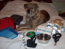 Gotta make sure Mack & Brody are prepared too.....Pet 72 hour kit