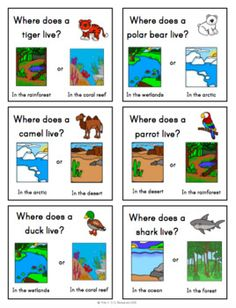 Animals & Habitats Unit and Speaking Task Cards - ESL/EL and newcomer unit! English Lessons, Learn English, Teaching Habitats, Science Activities, Science Lessons, Community Helpers Preschool, English Worksheets For Kids, Animal Habitats, English Language Learners