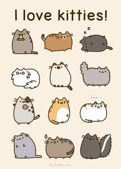 Kitties! ♥