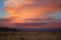 AZ high desert