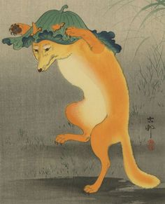 dancing foxes - Google Search