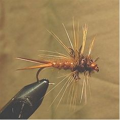 » The McKay Stonefly - Fly Fishing & Fly Tying Information Resource