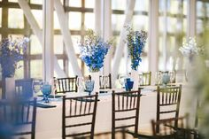 Blue and White Flowers on Tables