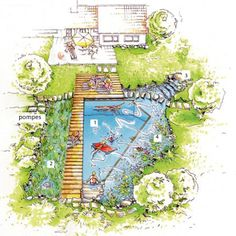 Natural pool with waterfall to promote water flow through plants. And I think i would add hidden fencing or chicken wire to make a koi pond inside the planted area. The koi are cool, but the also add the nitrates to the water to feed the plants!