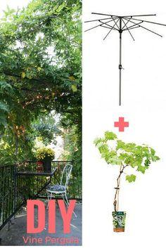 DIY create a natural pergola with an old umbrella structure and vine / DIY fabriquer une pergola naturelle avec une vieille structure de parasol et de la vigne