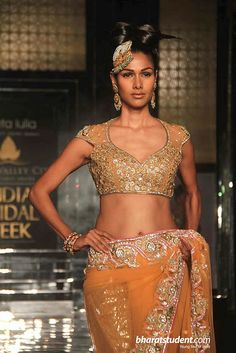 Neckline & sleeve    Aamby Valley India Bridal Week 2011 ~ Neeta Lulla