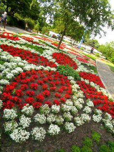 Outdoor Photo Booths, Baroque Design, Dream House Plans, Plant Design, Luxury Interior Design, Flower Beds, Hedges, Beautiful Gardens, Floral Arrangements