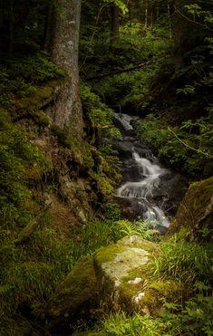 Waterfall in Blackforest, Germany - by Ajinkya Gote