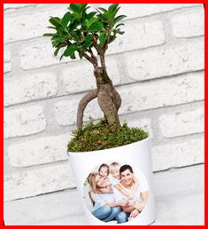 The personalized Ficus Bonsai tree is among the plants used for decorative purposes in homes and offices. The bonsai tree is known as a plant with deep meanings representing the harmony between earth, heaven, man, and nature. If you are looking for a meaningful gift for your loved ones, you can choose personalized Ficus Bonsai trees. Ficus Bonsai trees, which are the symbol of wisdom with their strong roots, are a long-lasting gift for your loved crafts to make and sell ideas Personali Christmas Lights Outside, Christmas House Lights, Christmas Tree Themes, Christmas Crafts For Kids, Christmas Wreaths, Christmas Nails, Christmas Ideas, Thanksgiving Games For Kids, Thanksgiving Table Settings