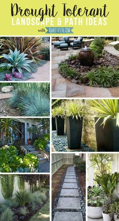 Drought Tolerant Landscape & Path Ideas | A Shade Of Teal http://www.LystHouse.com