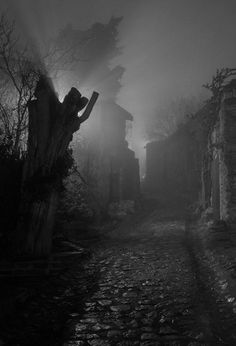 This abandoned dark town would peak Elizabeth's curiosity and cause her to enter…