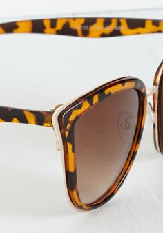 cf3ac5590e Rays Me Up Sunglasses in Tortoiseshell