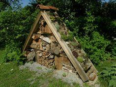 Friedas Garten-und Landleben: Ich war heute unterwegs.........