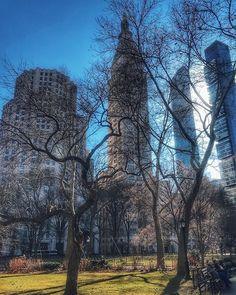 Good vibes from NYC!  Está um dia irretocável de inverno 2 graus céu azulzinho e sem uma nuvem!  O passeio hoje foi por Lower Manhattan e este registro é de um lugar que adoro: a praça Madison Square Park bem calma e arborizada.  Por aqui ficam o delicioso mercado Eataly e o icônico Flatiron Building. Mais 10 min andando a gente chega na Union Square outra área excelente para passear e a caminho do Soho. Qual sua praça preferida em NYC? #newyork_ig #thisisnewyorkcity #youmustgoblog…