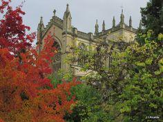 Catedral, Vitoria-Gasteiz