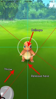"Pokemon GO ""Perfect"" Curveball Theory"