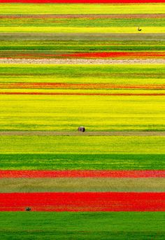 Missoni by Mario Vani on 500px