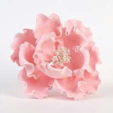 This listing is for one large gumpaste Peony - 3.50 diameter, with a floral wire for easy attachment. May contain floral tape as well. Please choose a color when ordering, and should you need any additional customizations, just send me a message! Each Peony is carefully packaged for