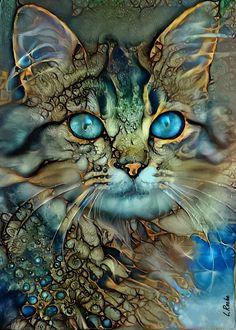 Drawn Art, Watercolor Cat, Arte Pop, Cat Drawing, Whimsical Art, Animal Paintings, Acrylic Painting Animals, Ink Art, Amazing Art