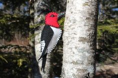 A striking Red Headed Woodpecker to make from felt.