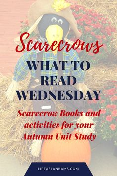 What to Read - Scarecrow Books and Activities - Amy Lanham