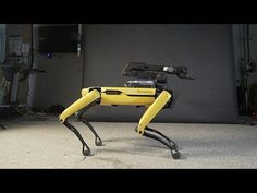 """Roboticists at Boston Dynamics released a video of their four-legged SpotMini robot dancing to Bruno Mars' song """"Uptown Funk. Bruno Mars, Meanwhile In America, Boston Dynamics, Robot Animal, Laughing Squid, Uptown Funk, Ufo Sighting, Spots, Police"""