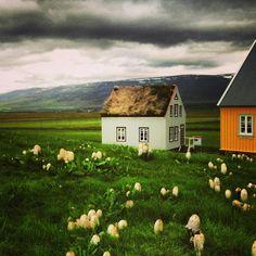 #icelandair Instagram photos   Webstagram - the best Instagram viewer