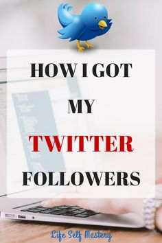 How to get more followers by using Social Quant by doing no work at all. Click through to read how! Get Twitter Followers, Get More Followers, Power Of Social Media, Social Media Site, Social Media Marketing, Business Sales, Small Business Marketing, Business Tips, Twitter For Business