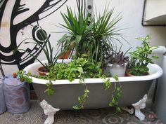 30 fun and creative ways to reuse an old bathtub A bathtub is an important part of any bathroom that invites you to soak in soapy water. From stone and porcelain to fiberglass or carbon f. Garden Bathtub, Old Bathtub, Bathtub Ideas, Outdoor Tub, Outdoor Landscaping, Ferns Garden, Garden Planters, Old Bathrooms, Bathroom Plants