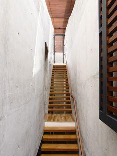 Belimbing Avenu / hyla architects