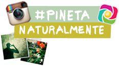 partecipa al #challeng del @Pineta Hotels #pinetanaturalmente e fai vincere i nostri piccoli amici dell'Anfass #trentino