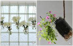 plantas suspensas pote de vidro 2