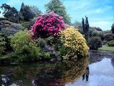 Biddulph Grange Gardens, England