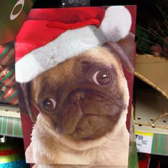 Christmas pug bag. I only repinned this because it looks like my dog