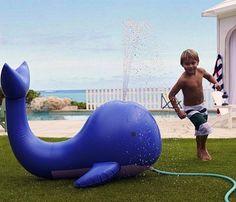 whale sprinkler
