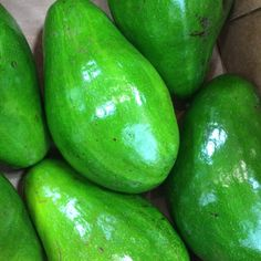 Florida avocados are easily distinguishable from other avocados in both appearance and flavor. Unlike Hass avocados, most Florida avocado varieties' skin does...